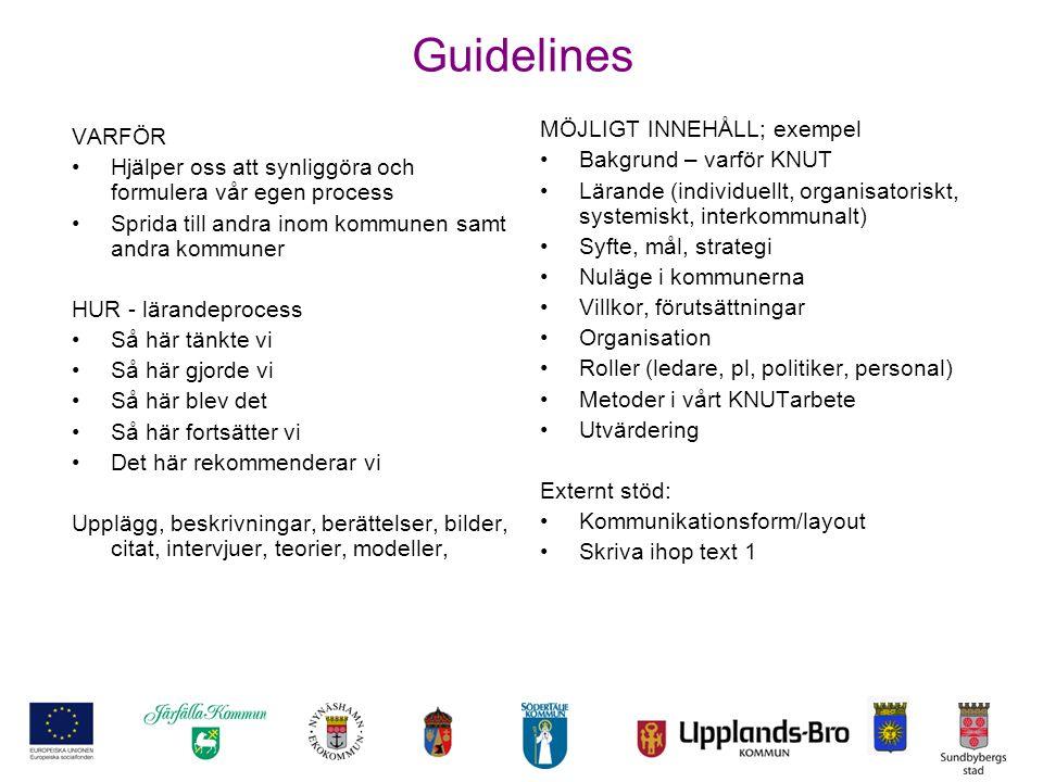 Guidelines VARFÖR Hjälper oss att synliggöra och formulera vår egen process Sprida till andra inom kommunen samt andra kommuner HUR - lärandeprocess S