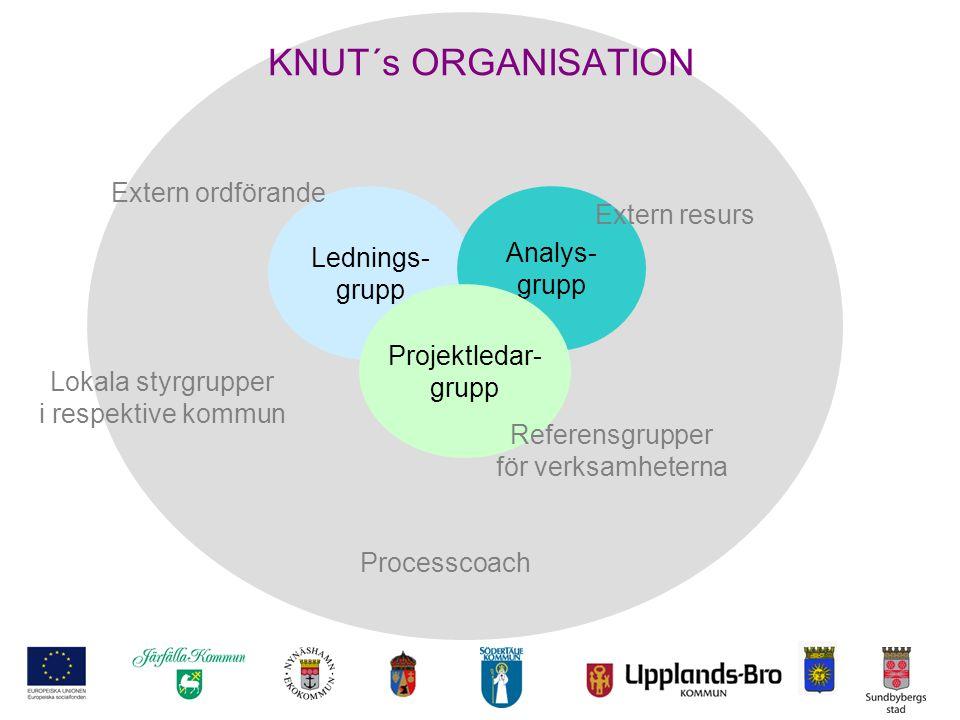 KNUT´s ORGANISATION Lednings- grupp Analys- grupp Projektledar- grupp Lokala styrgrupper i respektive kommun Referensgrupper för verksamheterna Proces