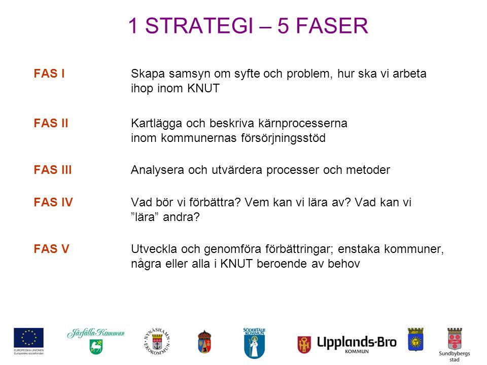 1 STRATEGI – 5 FASER FAS ISkapa samsyn om syfte och problem, hur ska vi arbeta ihop inom KNUT FAS IIKartlägga och beskriva kärnprocesserna inom kommun