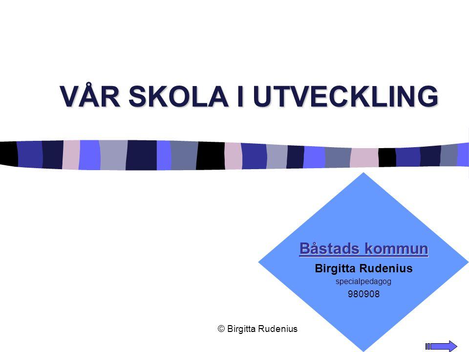 © Birgitta Rudenius Copyright, 1996 © Dale Carnegie & Associates, Inc. VÅR SKOLA I UTVECKLING Båstads kommun Birgitta Rudenius specialpedagog 980908