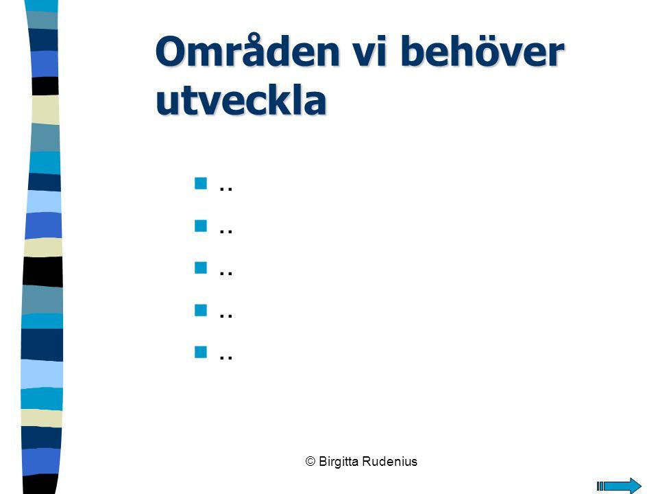 © Birgitta Rudenius Områden vi behöver utveckla n..