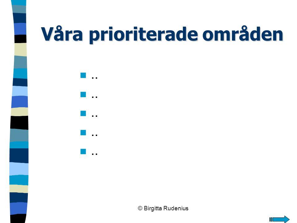 © Birgitta Rudenius Våra prioriterade områden n..