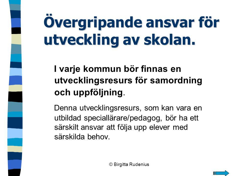 © Birgitta Rudenius Övergripande ansvar för utveckling av skolan. I varje kommun bör finnas en utvecklingsresurs för samordning och uppföljning. Denna