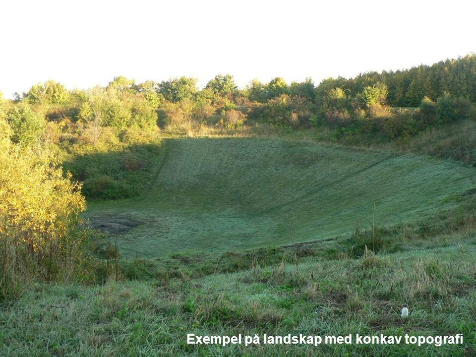 Exempel på landskap med konkav topografi