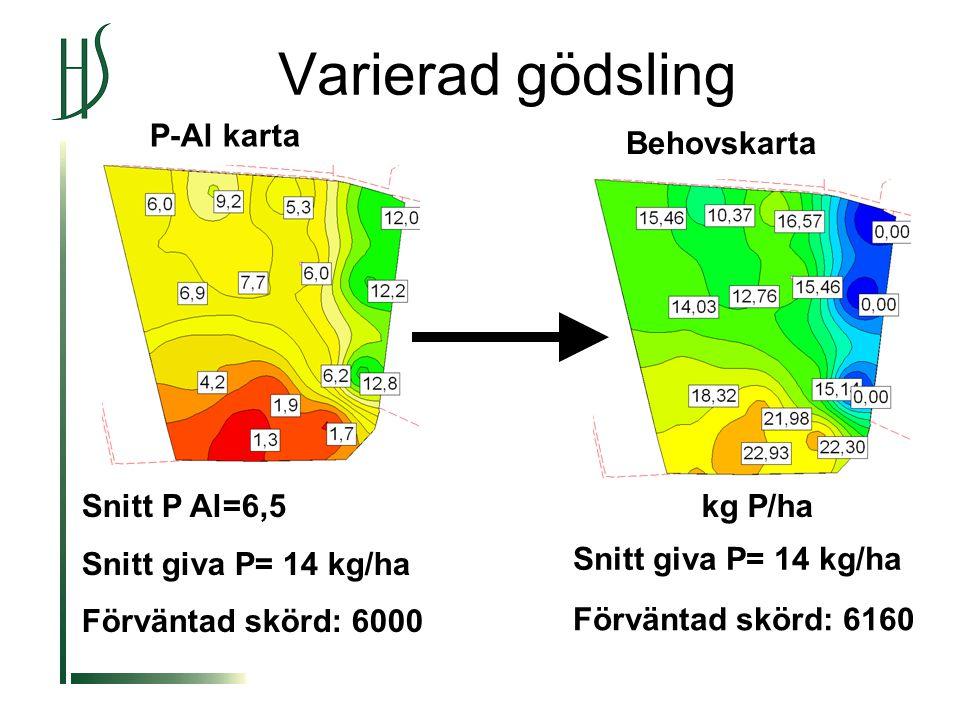 Varierad gödsling Snitt P Al=6,5 Snitt giva P= 14 kg/ha Förväntad skörd: 6000 Snitt giva P= 14 kg/ha Behovskarta Förväntad skörd: 6160 P-Al karta kg P/ha
