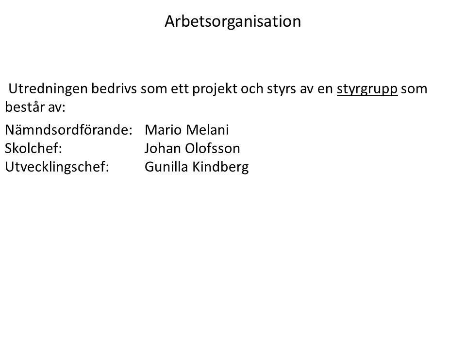 Arbetsorganisation Utredningen bedrivs som ett projekt och styrs av en styrgrupp som består av: Nämndsordförande: Mario Melani Skolchef:Johan Olofsson
