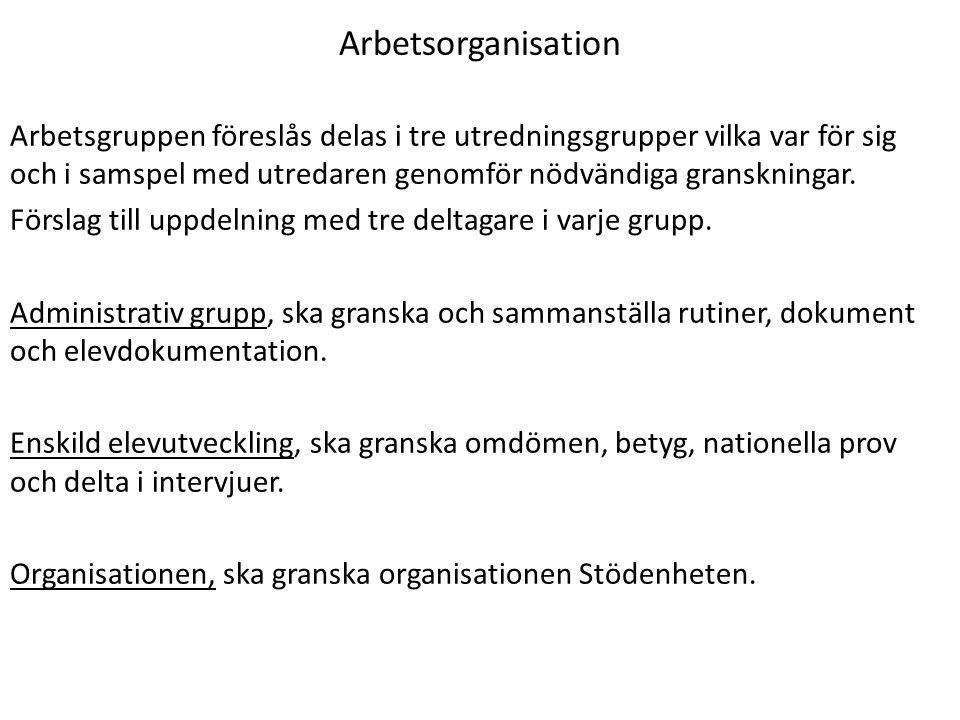 Arbetsorganisation Arbetsgruppen föreslås delas i tre utredningsgrupper vilka var för sig och i samspel med utredaren genomför nödvändiga granskningar