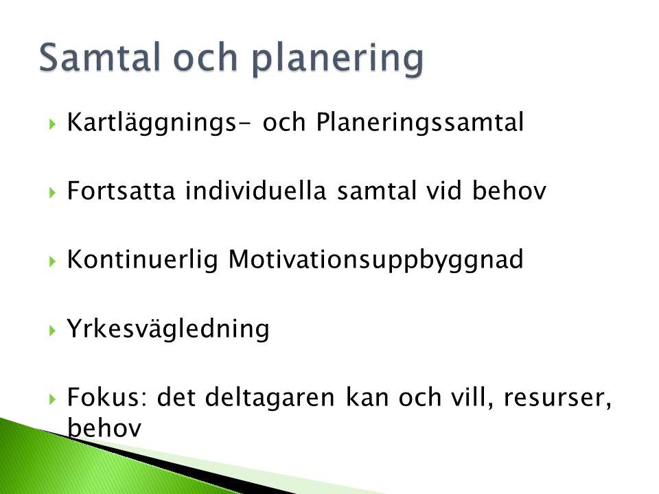 Kartläggnings- och Planeringssamtal  Fortsatta individuella samtal vid behov  Kontinuerlig Motivationsuppbyggnad  Yrkesvägledning  Fokus: det de