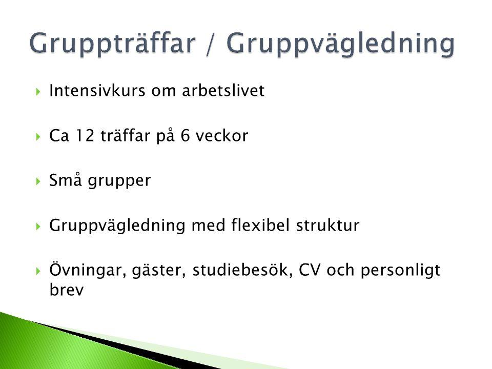  Intensivkurs om arbetslivet  Ca 12 träffar på 6 veckor  Små grupper  Gruppvägledning med flexibel struktur  Övningar, gäster, studiebesök, CV oc