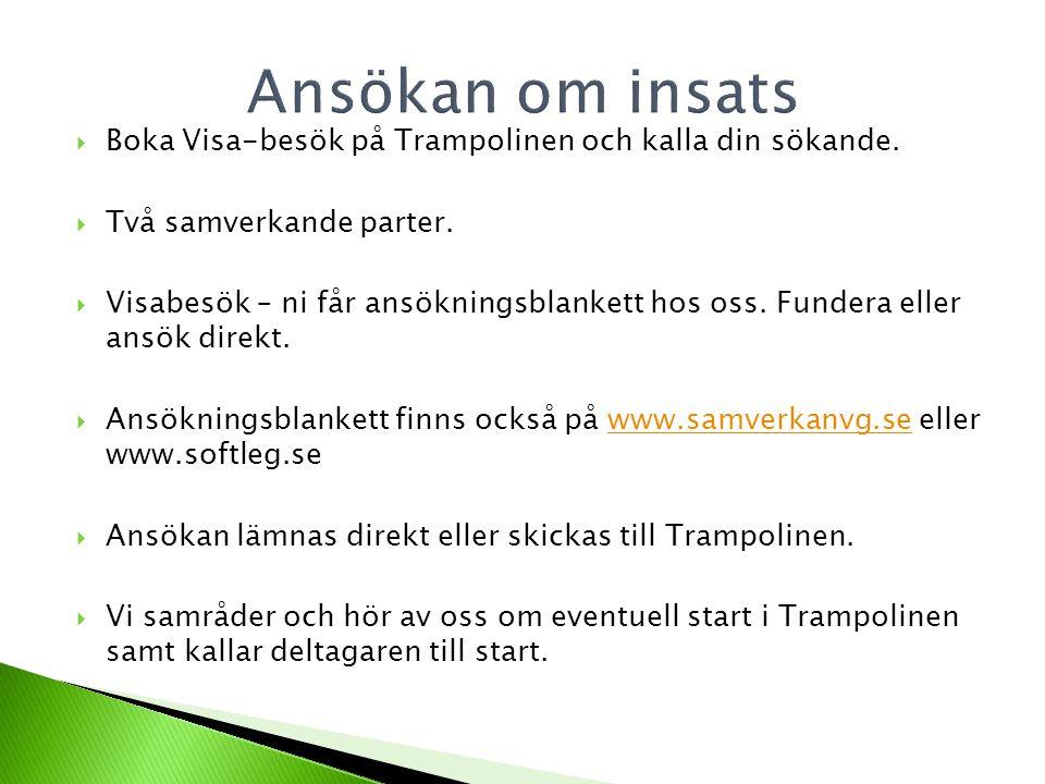  Boka Visa-besök på Trampolinen och kalla din sökande.  Två samverkande parter.  Visabesök – ni får ansökningsblankett hos oss. Fundera eller ansök