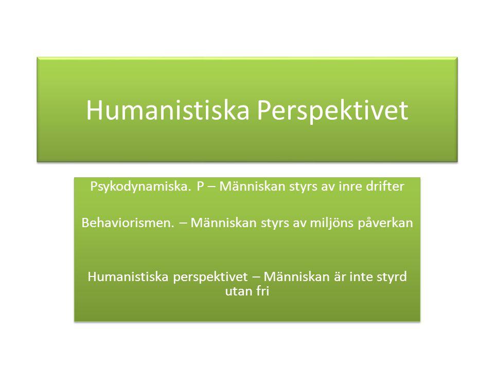 Humanistiska Perspektivet Psykodynamiska.P – Människan styrs av inre drifter Behaviorismen.
