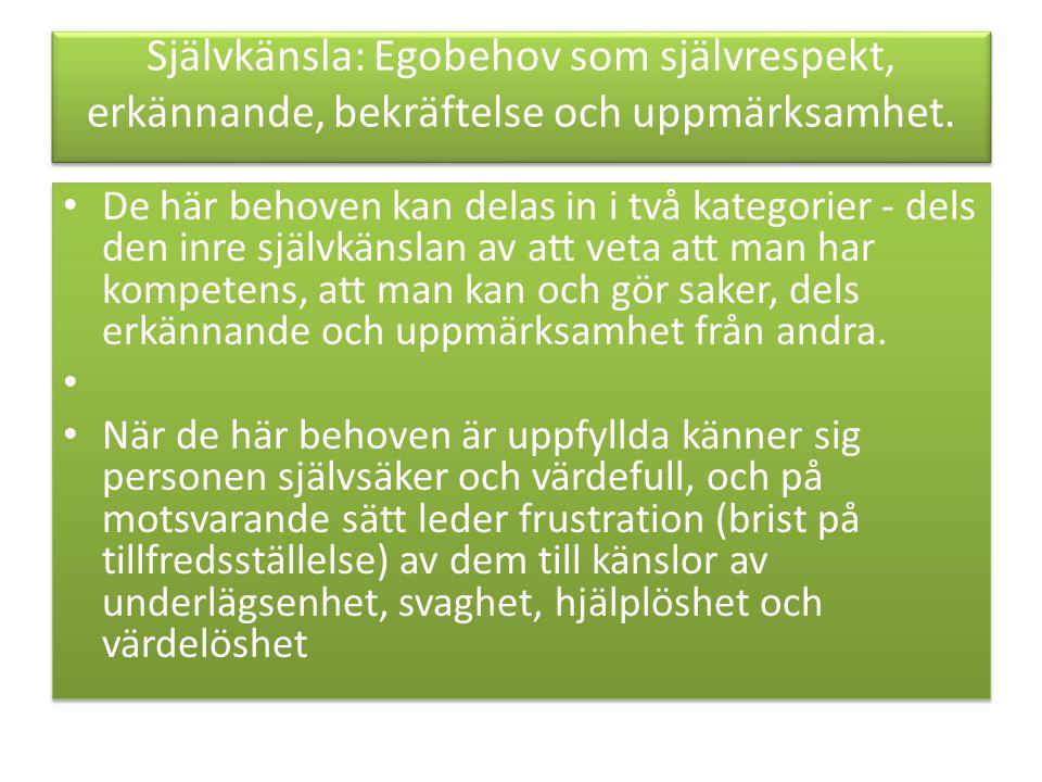 Självkänsla: Egobehov som självrespekt, erkännande, bekräftelse och uppmärksamhet.