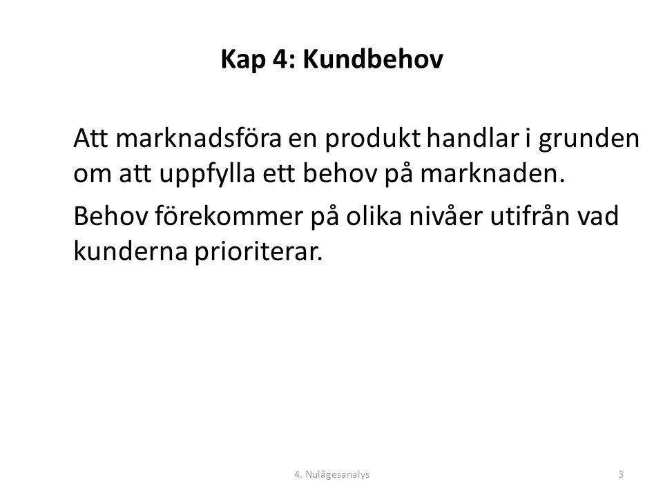 Kap 4: Kundbehov Maslows behovstrappa: 4. Nulägesanalys4