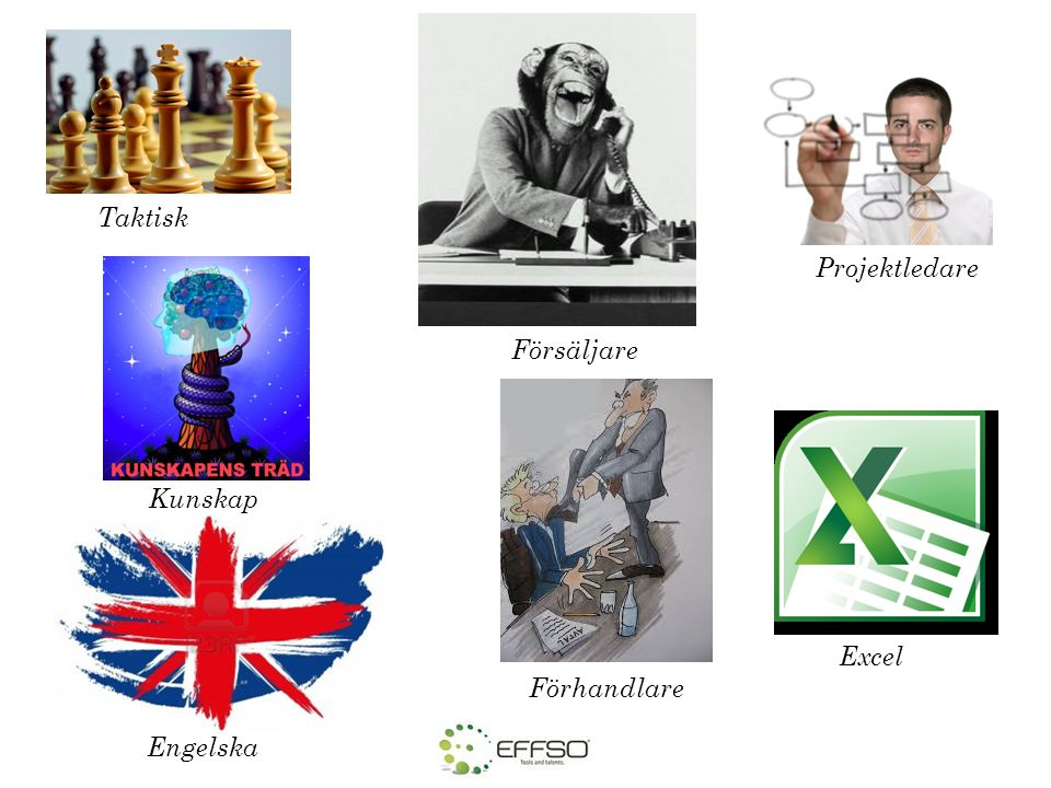 Taktisk Försäljare Förhandlare Excel Projektledare Kunskap Engelska