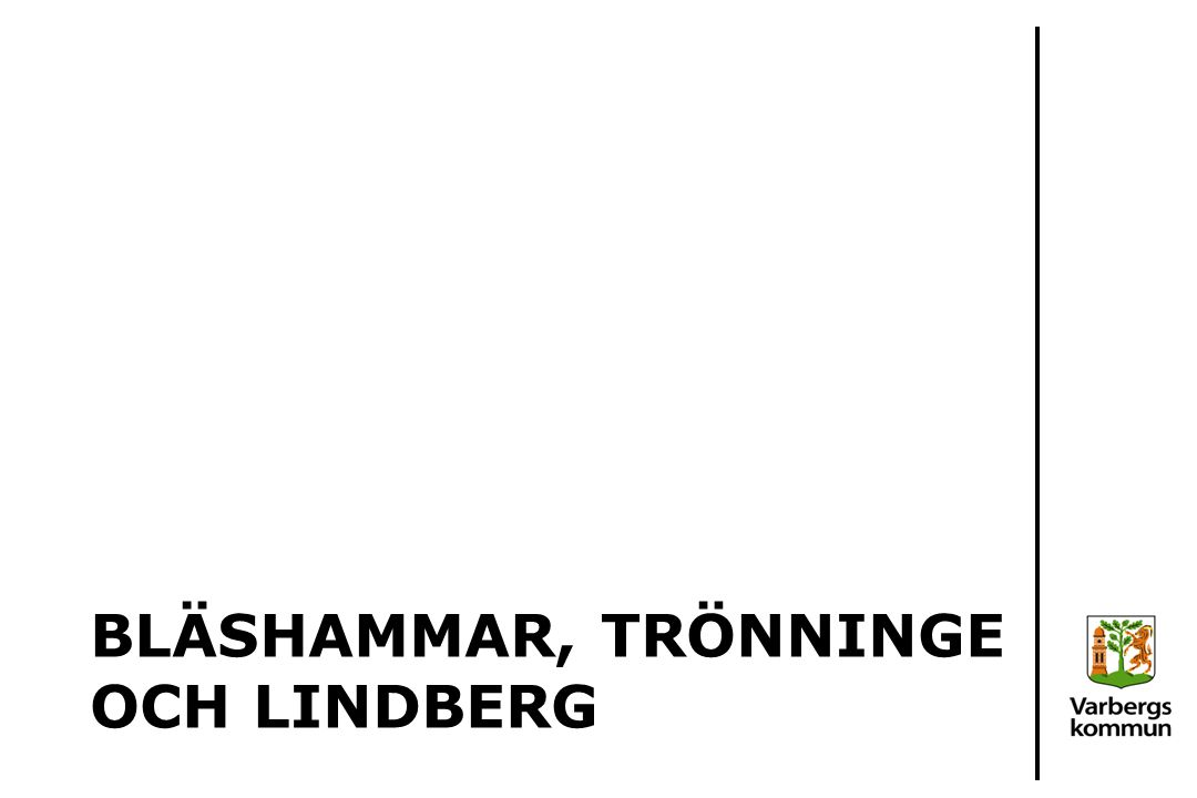Översikt: Elevutveckling Bläshammar och Lindberg