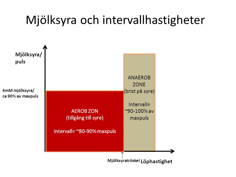 x x x x x x Mjölksyra/ puls Löphastighet x x x ANAEROB ZONE (brist på syre) Intervall= ~90-100% av maxpuls Mjölksyra och intervallhastigheter Mjölksyratröskel 4mM mjölksyra/ ca 90% av maxpuls x x x AEROB ZON (tillgång till syre) Intervall= ~80-90% maxpuls