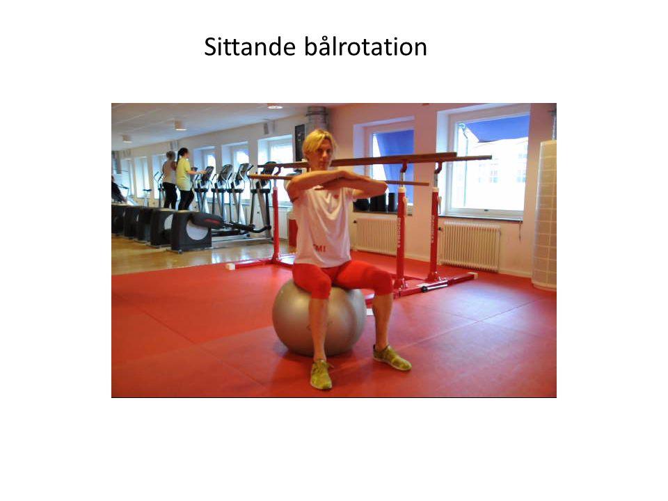 Sittande bålrotation