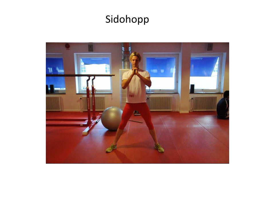 Sidohopp