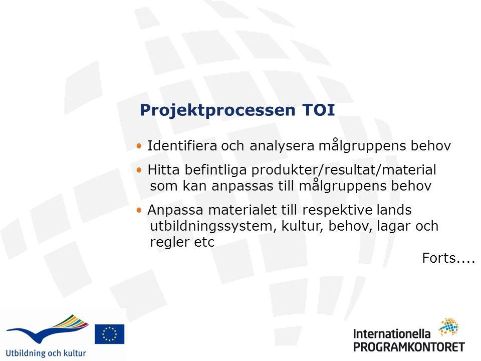 Projektprocessen TOI Identifiera och analysera målgruppens behov Hitta befintliga produkter/resultat/material som kan anpassas till målgruppens behov Anpassa materialet till respektive lands utbildningssystem, kultur, behov, lagar och regler etc Forts....