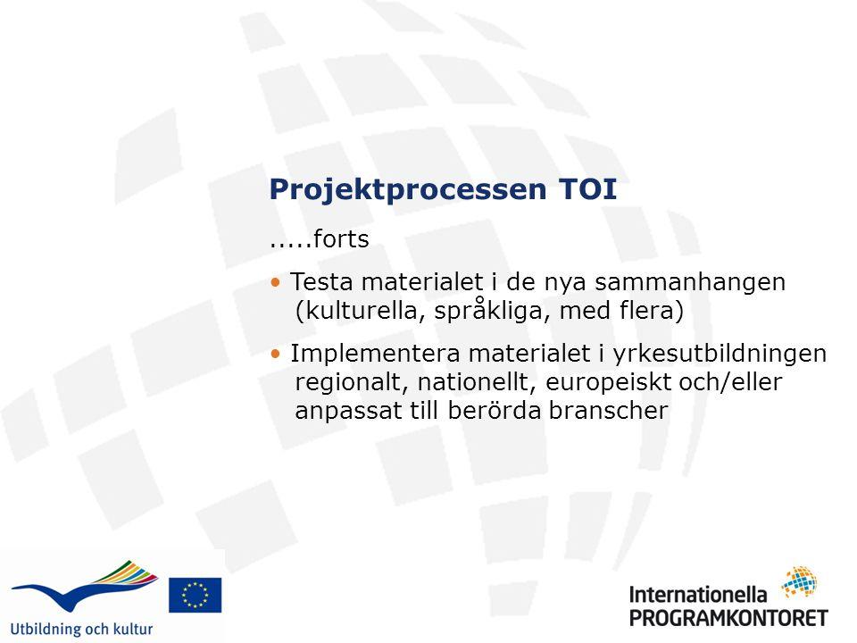 Projektprocessen TOI.....forts Testa materialet i de nya sammanhangen (kulturella, språkliga, med flera) Implementera materialet i yrkesutbildningen regionalt, nationellt, europeiskt och/eller anpassat till berörda branscher
