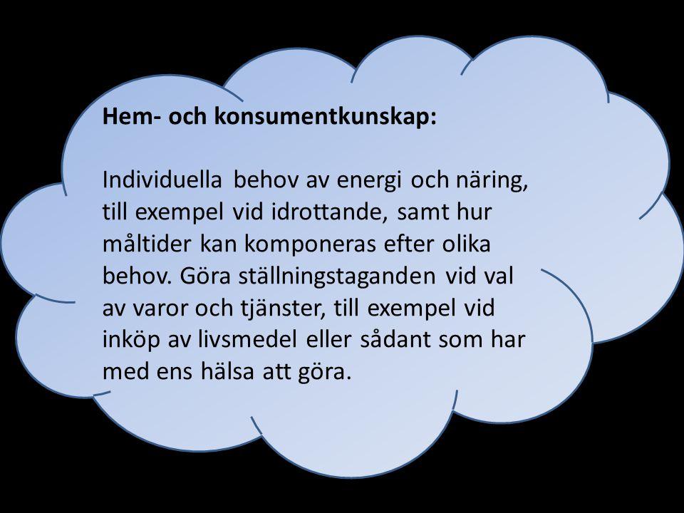 Svenska/svenska som andraspråk: Att få kunskap om vad etik och moral är.