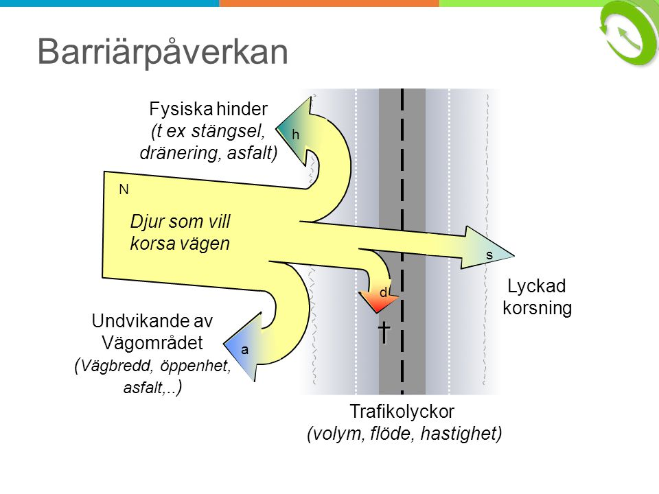 0 100 02000400060008000100001200014000 successful killed repelled Traffic volume (adt) I II III Road category Barriärmodell Älg Model moose: % of animals trying to cross the road