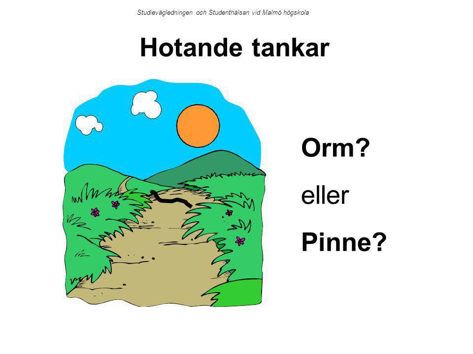 Hotande tankar Orm? eller Pinne? Studievägledningen och Studenthälsan vid Malmö högskola