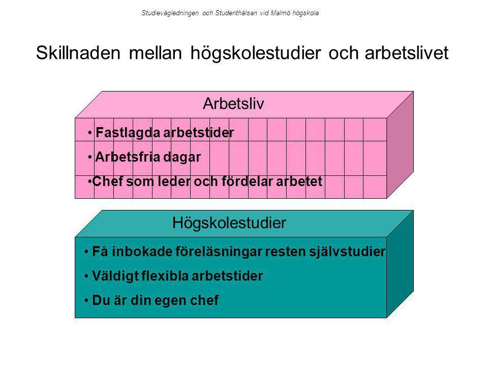 Skillnaden mellan högskolestudier och arbetslivet Arbetsliv Högskolestudier Fastlagda arbetstider Arbetsfria dagar Chef som leder och fördelar arbetet Få inbokade föreläsningar resten självstudier Väldigt flexibla arbetstider Du är din egen chef Studievägledningen och Studenthälsan vid Malmö högskola