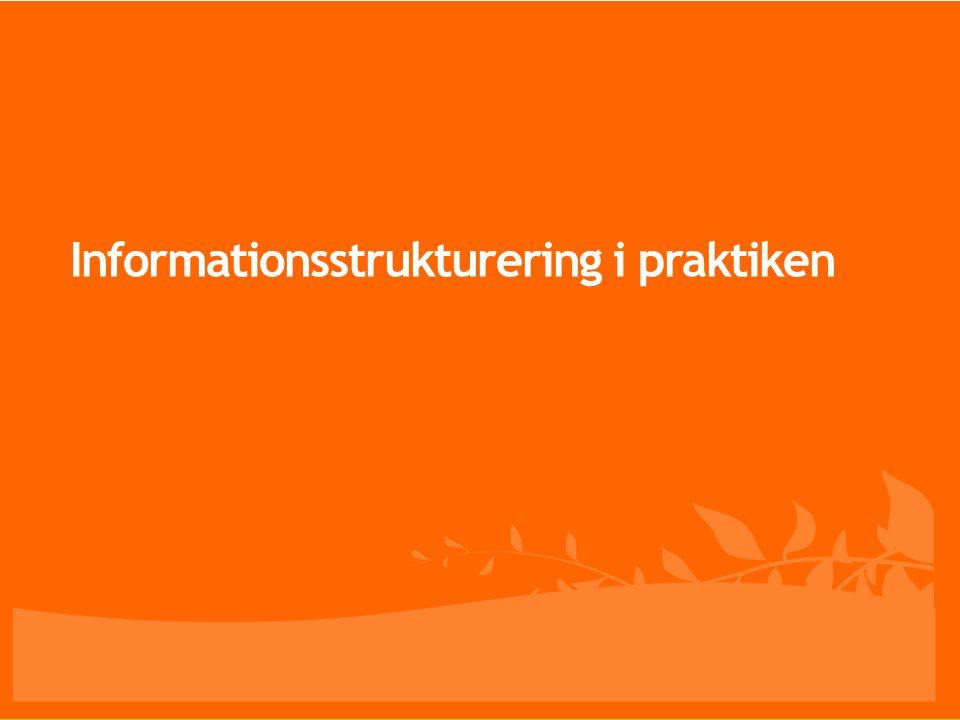 Informationsstrukturering i praktiken