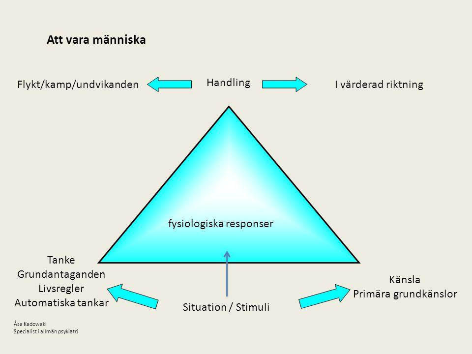 Att vara människa fysiologiska responser Handling I värderad riktning Tanke Grundantaganden Livsregler Automatiska tankar Känsla Primära grundkänslor