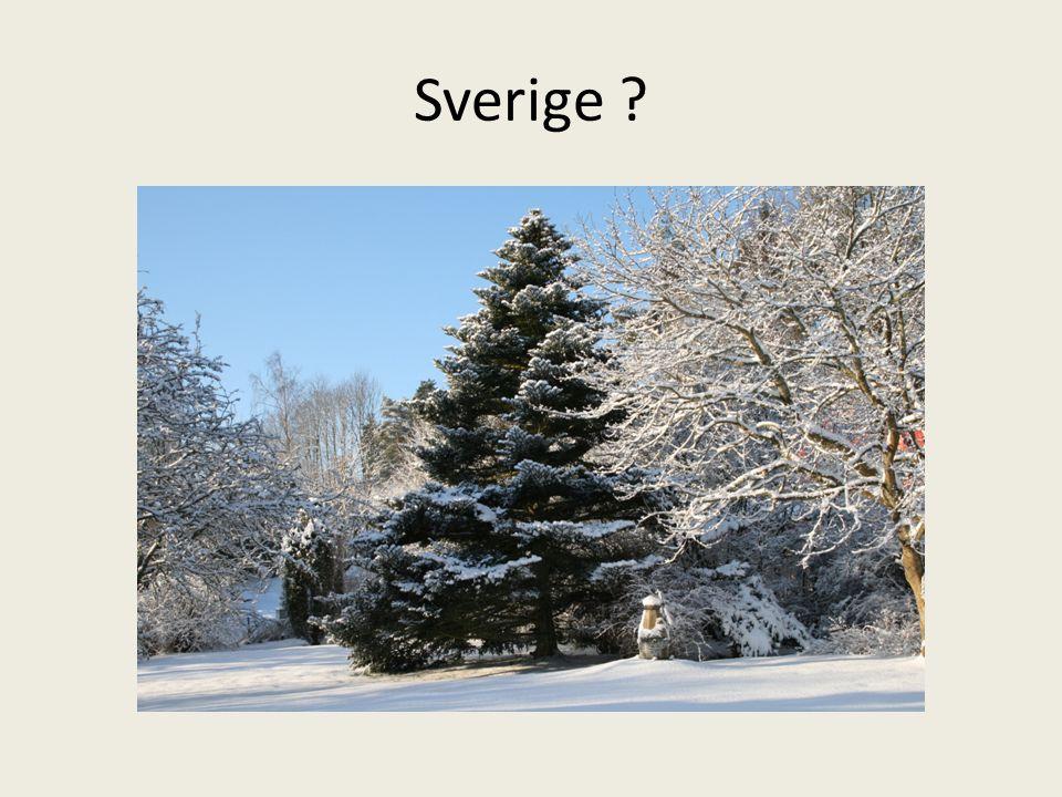 Sverige ?