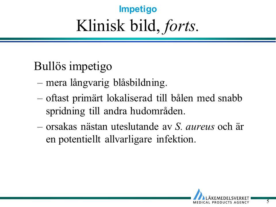 Impetigo 5 Klinisk bild, forts. Bullös impetigo –mera långvarig blåsbildning. –oftast primärt lokaliserad till bålen med snabb spridning till andra hu