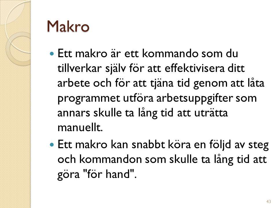 43 Makro Ett makro är ett kommando som du tillverkar själv för att effektivisera ditt arbete och för att tjäna tid genom att låta programmet utföra arbetsuppgifter som annars skulle ta lång tid att uträtta manuellt.
