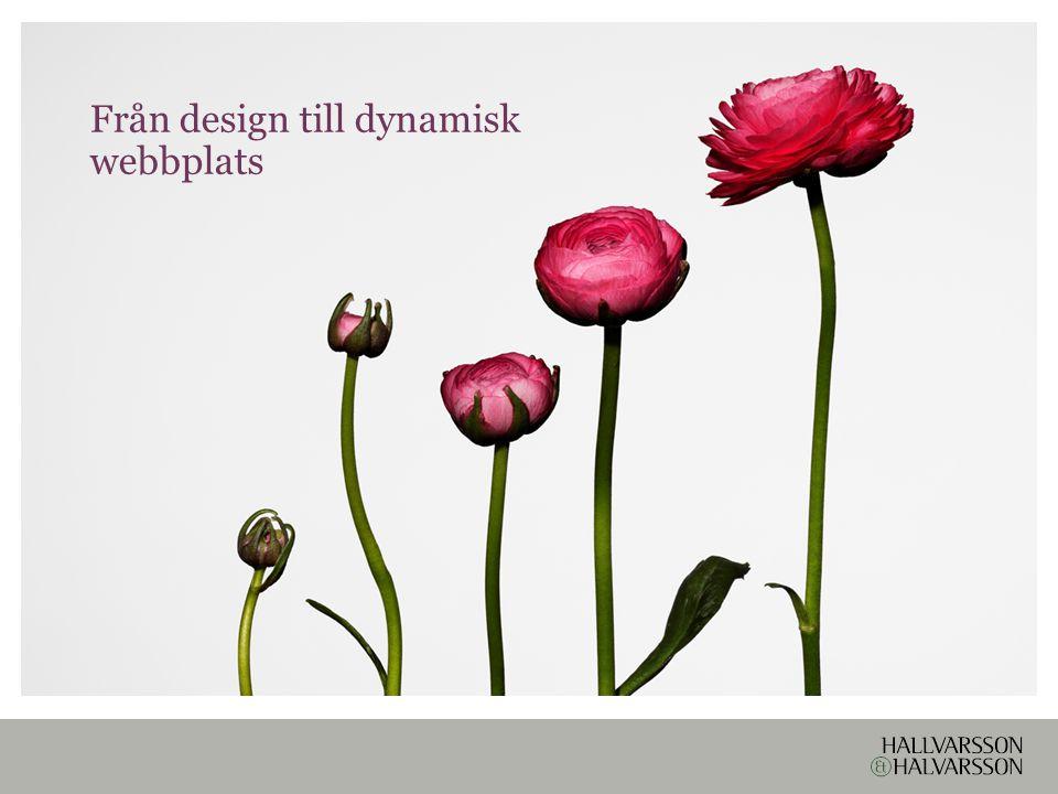 Från design till dynamisk webbplats