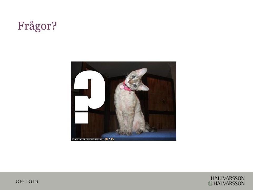 Frågor? 2014-11-23 | 18