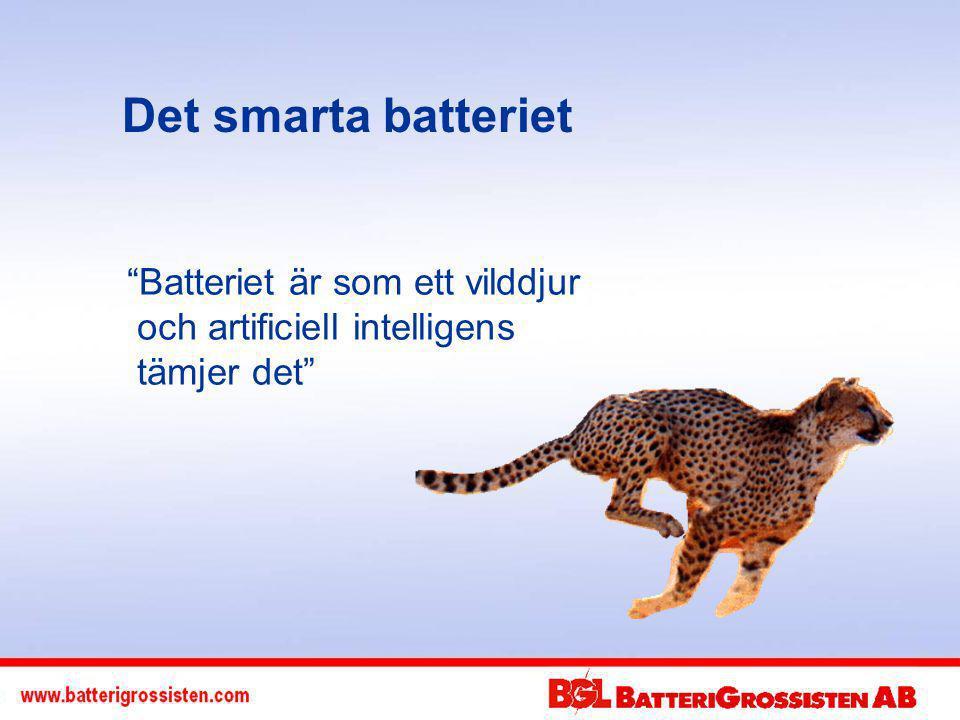 Det smarta batteriet Batteriet är som ett vilddjur och artificiell intelligens tämjer det