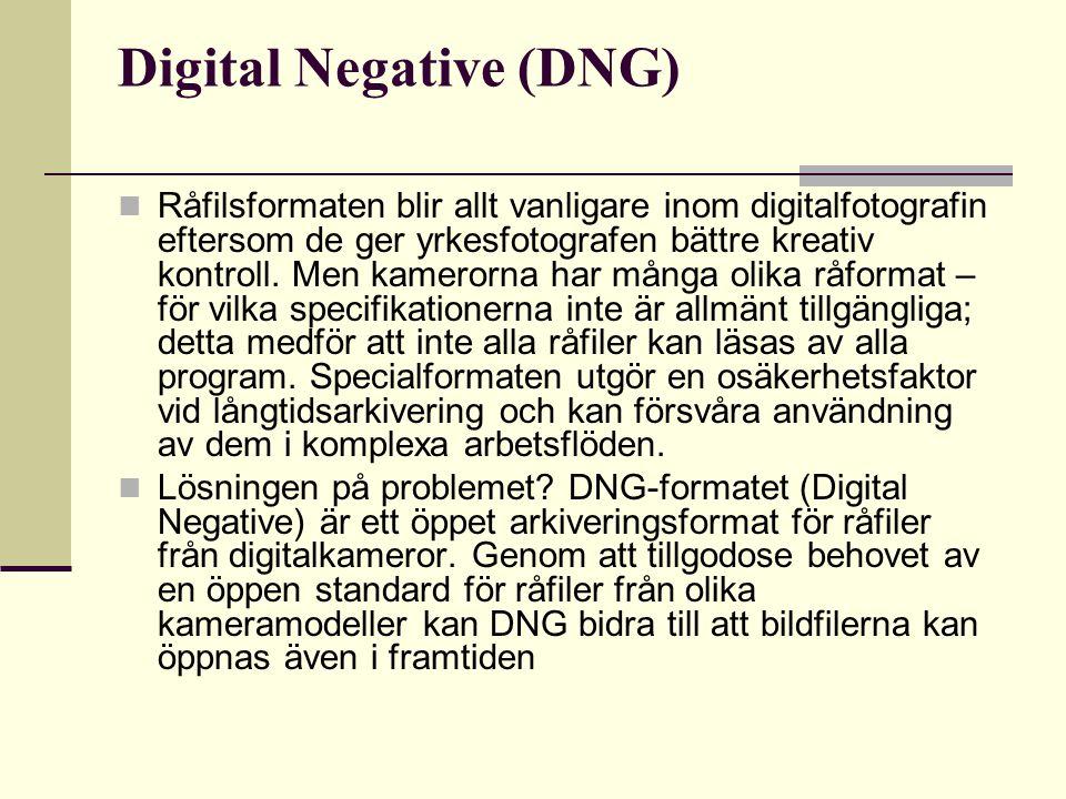 Digital Negative (DNG) Råfilsformaten blir allt vanligare inom digitalfotografin eftersom de ger yrkesfotografen bättre kreativ kontroll.