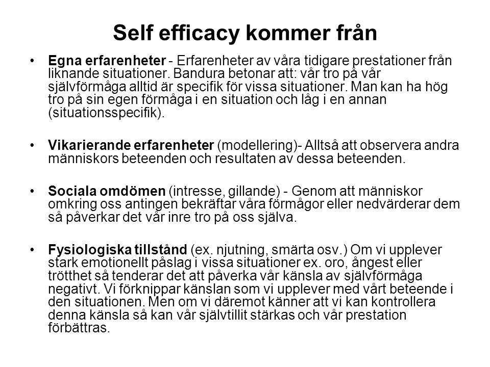 Self efficacy kommer från Egna erfarenheter - Erfarenheter av våra tidigare prestationer från liknande situationer. Bandura betonar att: vår tro på vå