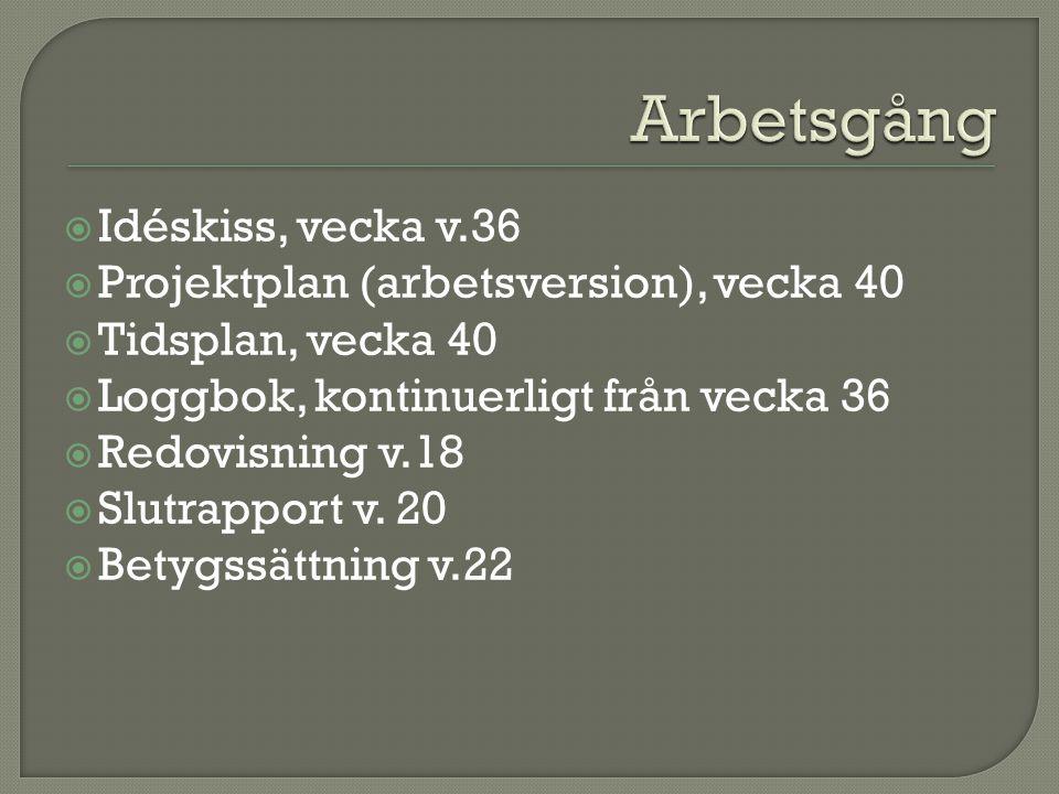  Idéskiss, vecka v.36  Projektplan (arbetsversion), vecka 40  Tidsplan, vecka 40  Loggbok, kontinuerligt från vecka 36  Redovisning v.18  Slutrapport v.