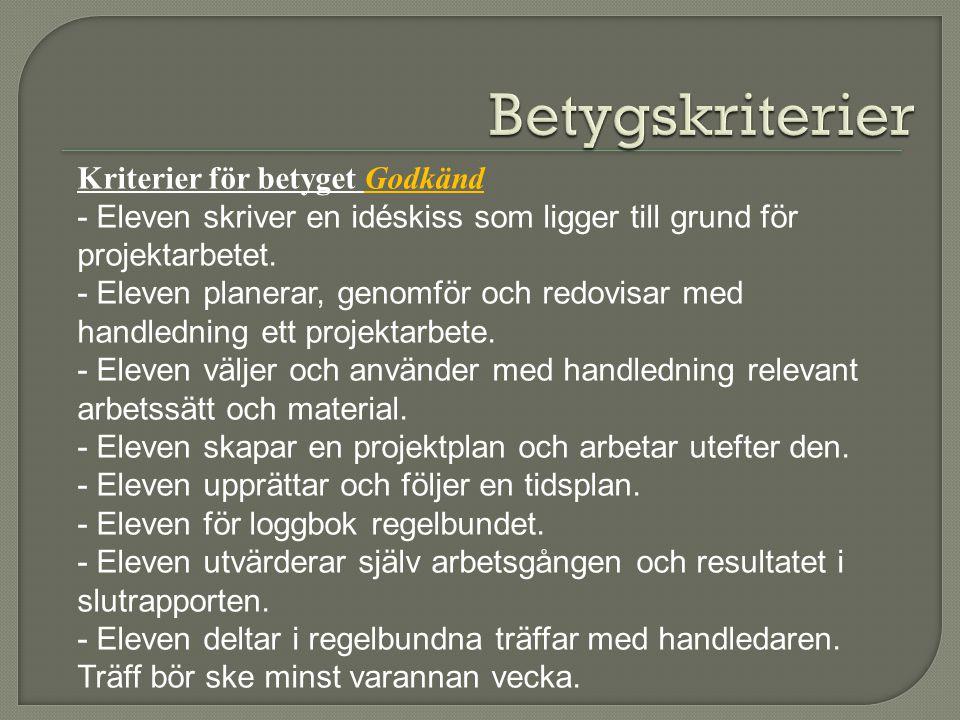 Kriterier för betyget Godkänd - Eleven skriver en idéskiss som ligger till grund för projektarbetet.