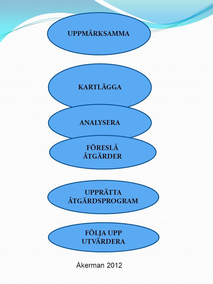 Individnivå – Barnets/elevens utveckling barnet/elevens syn på sig själv föräldrarnas syn på barnets/elevens situation personalens syn på barnets/elevens situation situationer där lärandet fungerar och tvärtom kunskapsnivå i relation till mål att uppnå starka sidor och intressen ansvar och inflytande Gruppnivå – Relationer i lärandemiljön relationer mellan barnet/eleven och kamrater barnet/eleven och vuxna i lärandemiljön vuxna och vuxna i lärandemiljön trygghet, ordning och reda, lugn och ro klimat och atmosfär utveckling av självkänsla respektive självförtroende anpassning av arbetssätt och material utifrån barnets/elevens förutsättningar och behov gruppsammansättning