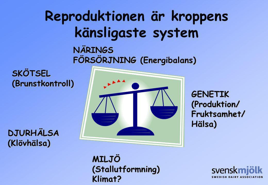 GENETIK(Produktion/Fruktsamhet/Hälsa)NÄRINGS FÖRSÖRJNING (Energibalans) SKÖTSEL(Brunstkontroll) DJURHÄLSA(Klövhälsa) MILJÖ(Stallutformning)Klimat? Rep