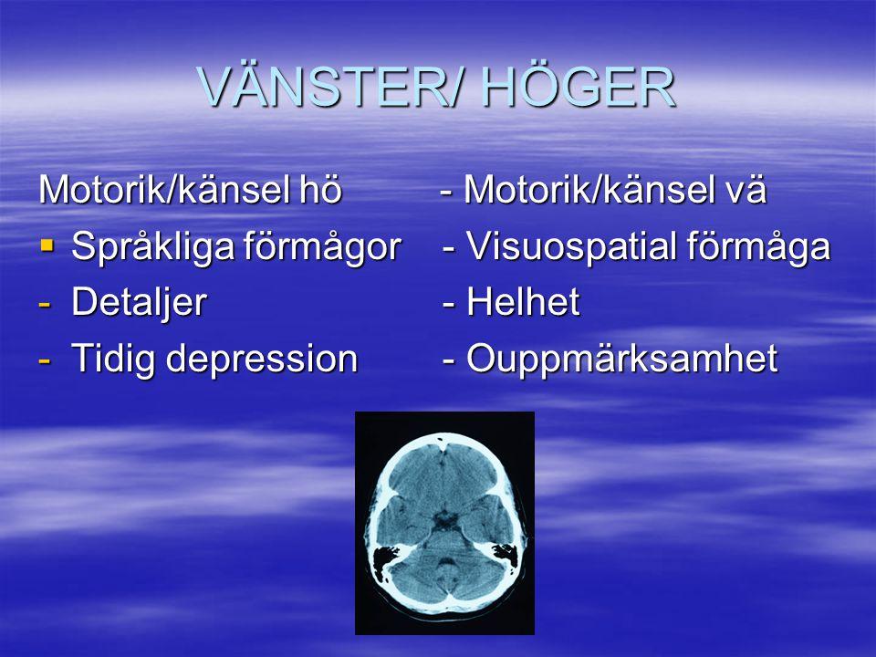VÄNSTER/ HÖGER Motorik/känsel hö - Motorik/känsel vä  Språkliga förmågor - Visuospatial förmåga -Detaljer - Helhet -Tidig depression - Ouppmärksamhet