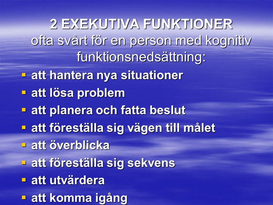 2 EXEKUTIVA FUNKTIONER ofta svårt för en person med kognitiv funktionsnedsättning:  att hantera nya situationer  att lösa problem  att planera och