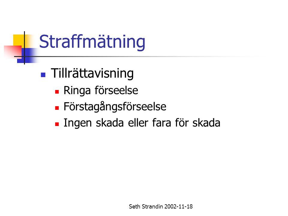 Seth Strandin 2002-11-18 Straffmätning Tillrättavisning Ringa förseelse Förstagångsförseelse Ingen skada eller fara för skada