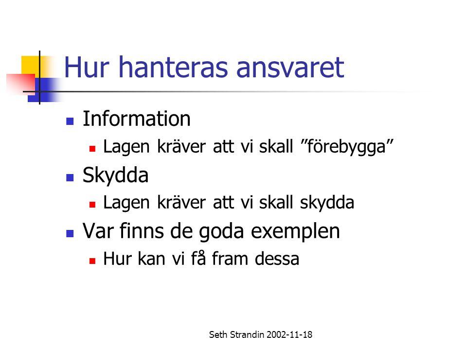 Seth Strandin 2002-11-18 Ansvarsfördelning Spelarna Regler och etikett Förståelse och hänsyn