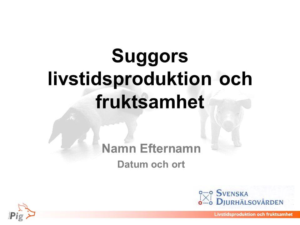 Livstidsproduktion och fruktsamhet Suggors livstidsproduktion och fruktsamhet Namn Efternamn Datum och ort