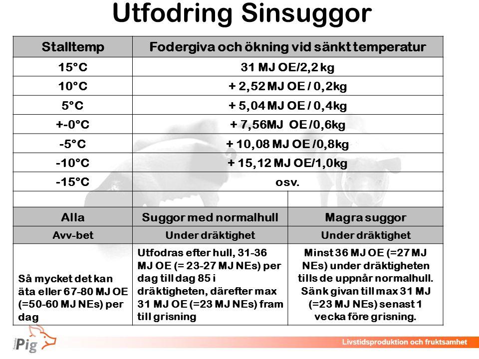 Livstidsproduktion och fruktsamhet Utfodring Sinsuggor StalltempFodergiva och ökning vid sänkt temperatur 15°C31 MJ OE/2,2 kg 10°C+ 2,52 MJ OE / 0,2kg