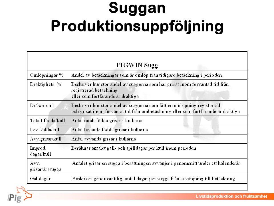 Livstidsproduktion och fruktsamhet Suggan Produktionsuppföljning