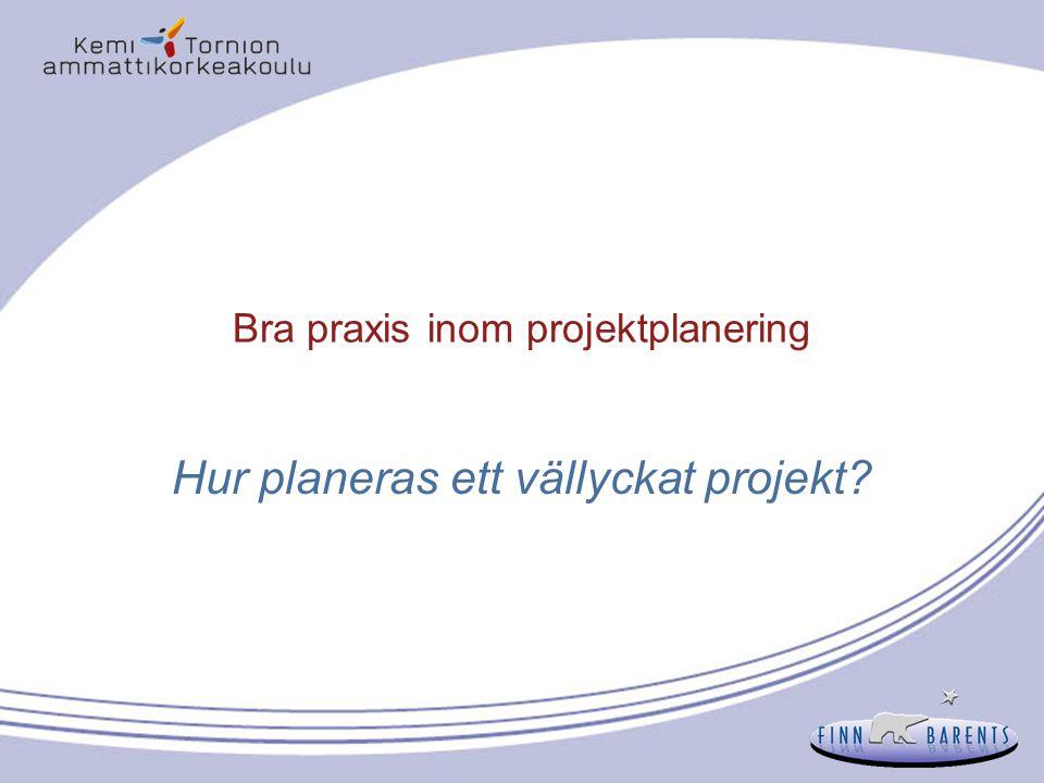 Planeringen av den egentliga projektplaneringsfasen startar Utarbetning av en enhetlig projektplan - Alla element länkas och beaktas -